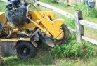 Aramara Stump grinding services 3