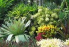 Aramara Sustainable landscaping 3